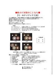 防カビ対策『モールドマジック工法』 表紙画像
