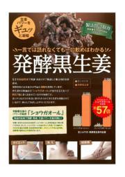 健康食品素材『発酵黒生姜』 表紙画像