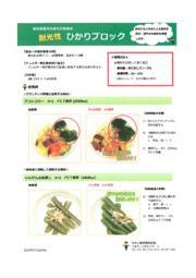 緑色野菜用光変色抑制製剤『ひかりブロック』 表紙画像