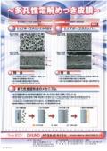 多孔性電解めっき皮膜 トップポーラスニッケルRSN