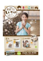 きのこ村のご紹介 表紙画像