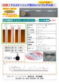 『アルミケーシング型3mパイプひずみ計』