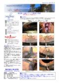 金属亀裂補修技術 LOCK-N-STITCH 施工実績1