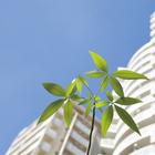 真和建装株式会社 企業イメージ