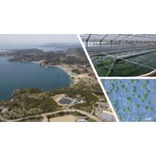 株式会社イービス藻類産業研究所 企業イメージ