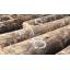 山陽木材株式会社 企業イメージ