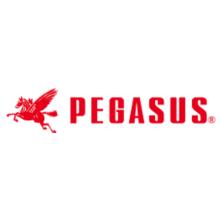ペガサスミシン製造株式会社 企業イメージ