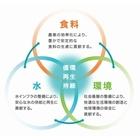 GLOOP-JPN.jpg