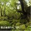 株式会社PALTEK デザインサービス事業部 企業イメージ