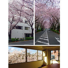 PICOSUN JAPAN株式会社 社屋画像