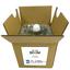 天然ハーブ由来の香る消臭剤『BIO-DM(バイオディーエム)』 製品画像