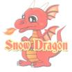 屋根融雪システム『スノードラゴン』 製品画像