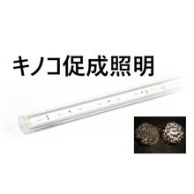 キノコ用LED照明 製品画像