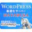 WordPress適化サーバー『HAYABUSA』 製品画像