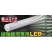 『植物栽培専用/LED照明』※大幅コストダウンが可能に! 製品画像