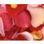 機能性食品原料 オリジナル原料『ROSE CRYSTA-70』 製品画像