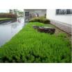 緑地帯【施工事例】 製品画像