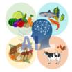 食品産業の関係者必見!『AI一次産業複合化システム』 製品画像