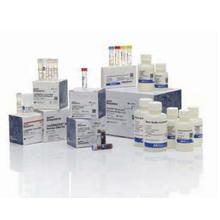 resDNASEQ 宿主細胞由来残存DNA定量システム 製品画像
