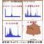 超音波伝搬現象の分類(コンサルティング対応) 製品画像