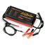 全自動バッテリー再生機『レディパルスチャージャー』 製品画像
