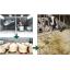 食品リサイクル『食品廃棄物オンサイト処理システム』 製品画像