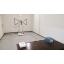 EMC試験サービス『放射電磁界試験(放射イミュニティ試験)』 製品画像
