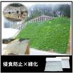 侵食防止用植生マット『キルケット M型』張芝『キルケット S型』 製品画像