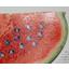 UV加工用塗料 製品画像
