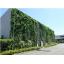 パネル型 壁面緑化システム「のぼるtoみどり」 製品画像