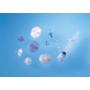 HPLCサンプル前処理用フィルタ 「クロマトディスク」 製品画像