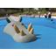 【納入実績】龍のモニュメント遊具 製品画像