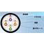 LANケーブル『OKTP-6A-AWG24×4P-ODSA』 製品画像