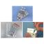 CRSF PTP用アルミ箔 製品画像
