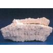 機能性素材『化石サンゴパウダー』 製品画像