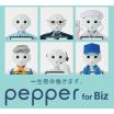 法人向け ビジネスに特化した 『Pepper for Biz』  製品画像