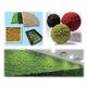 ディスプレイ製品『TERRA MOSS-AP・プレミアム』 製品画像