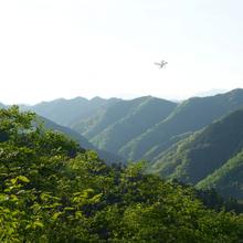 ドローン(UAV)を利用した森林調査 製品画像