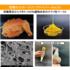 MaCSIE(マクシー)~柑橘果皮高機能ペースト~  製品画像