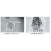 既調合軽量エポキシ樹脂モルタル『アサヒボンドBE12』 製品画像