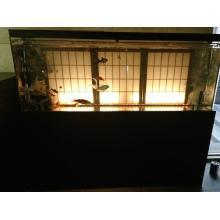 【水槽の設置事例】店舗・ショールーム 製品画像