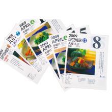 オフセットカラー印刷 製品画像