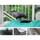 日本鳩対策センターの鳥害対策について 製品画像
