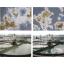 糸状性バルキング抑制剤「エルビック50S/B-70・100」 製品画像