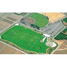 スポーツ用天然芝『グラウンドグラス』 製品画像