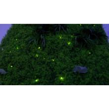 ストリングスライト『ほたるライト』 製品画像