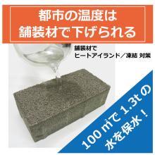 超保水ブロック『グリーンビズ G-tt』【保水能力50%UP!】 製品画像