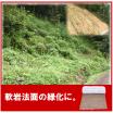軟岩I・硬質土壌用植生マット『シロクマット』 製品画像