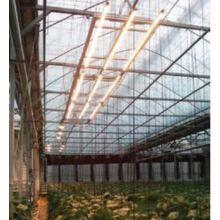 【植物工場向け】LED照明HIGH-POWER BAR TYPE 製品画像