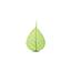 SABIC ULTEM樹脂 製品画像